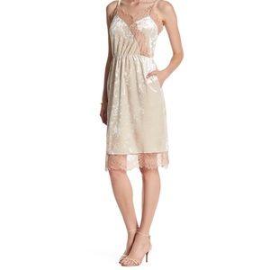 Madison & Berkeley Lace Velvet Cami Dress